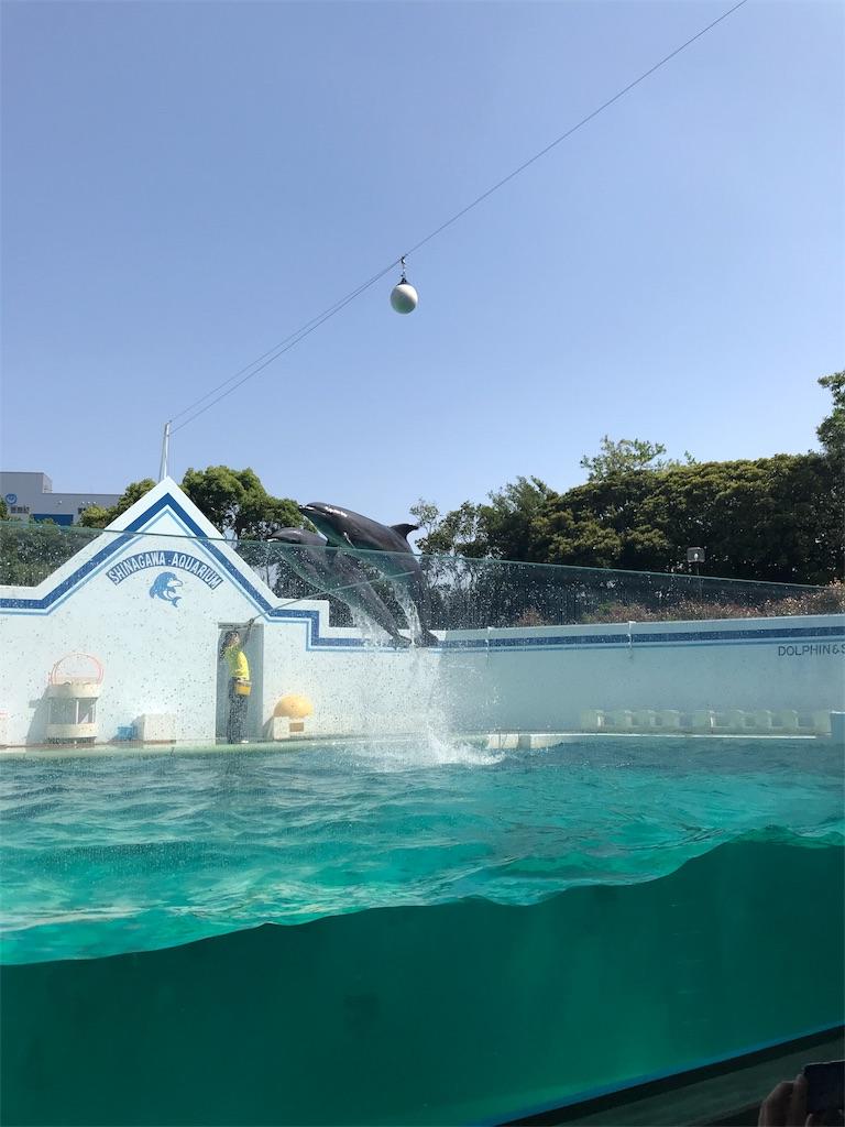 f:id:norry-yasuda:20180507174943j:image